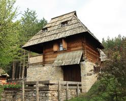 Zlatibor - The Golden mountain