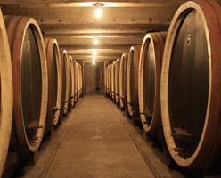 Royal footprints Wine tour