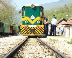 Zlatibor and Sargan Eight Train