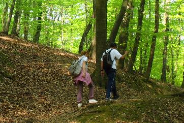 Hiking through Fruška gora