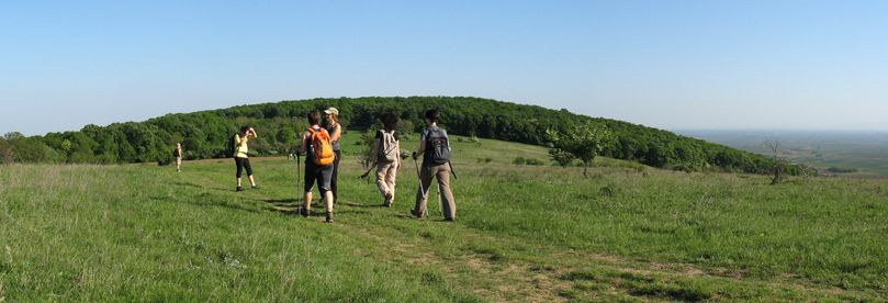 Hikers are crossing meadow of Fruska gora.