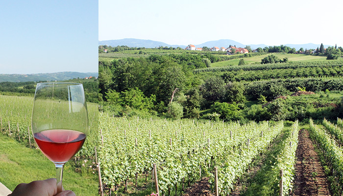 What to visit near Belgrade are vineyards of Sumadija in summer.