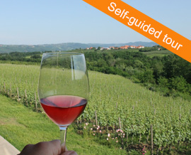 Wine Region Self-Guided Tour